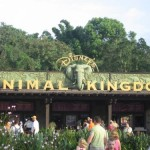 Disney´s Animal Kingdom, naturaleza salvaje en Orlando