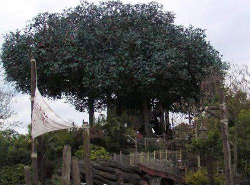 Cabaña de los Robinsones Suizos