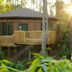 Disney Treehouse Villas, en Disneyworld