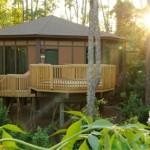 Disney Treehouse Villas, en Disneyworld