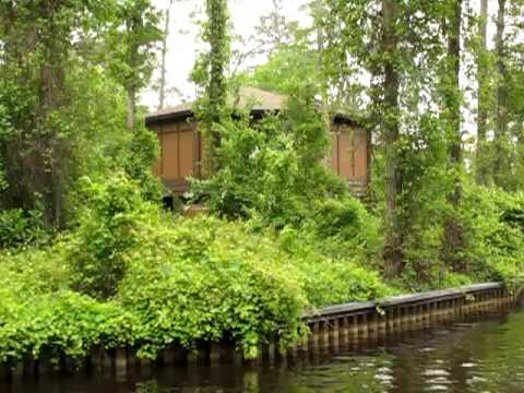 Disney Treehouse