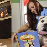 Viajar con mascotas a Disneyland